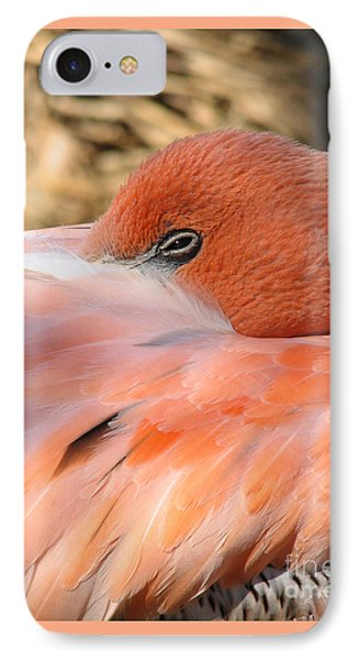 IPhone Case featuring the photograph Flamingo by Eva Kaufman