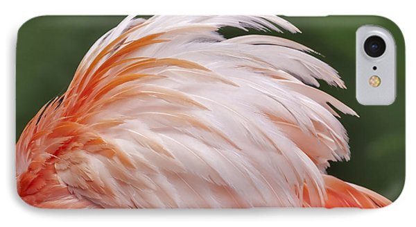 Flamingo Feathers IPhone Case by Susan Candelario