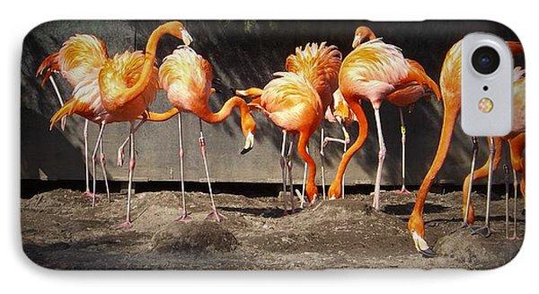 Flamingo Hangout IPhone Case by Sara  Raber