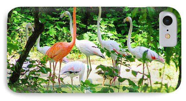 Flamingo IPhone Case by Oleg Zavarzin