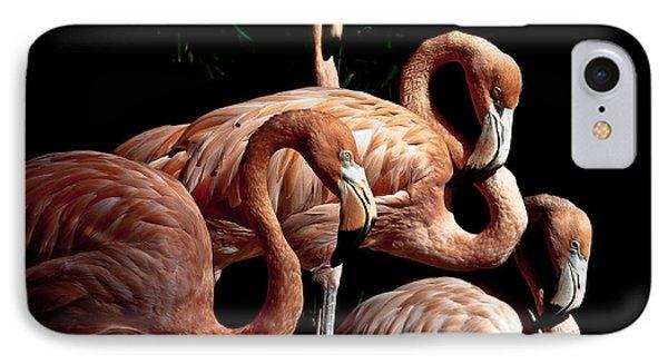 Flamingo Phone Case by Robert Frederick