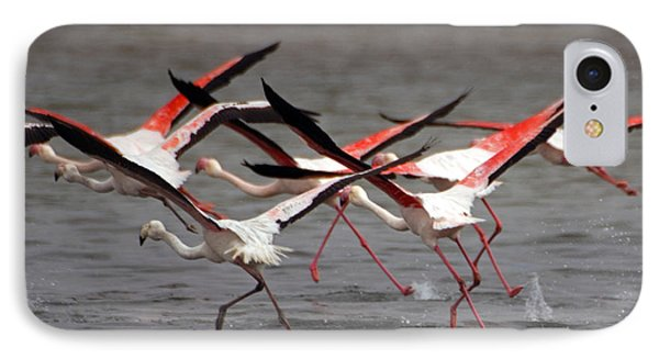 IPhone Case featuring the photograph Flamingoes In Flight by Dennis Cox WorldViews