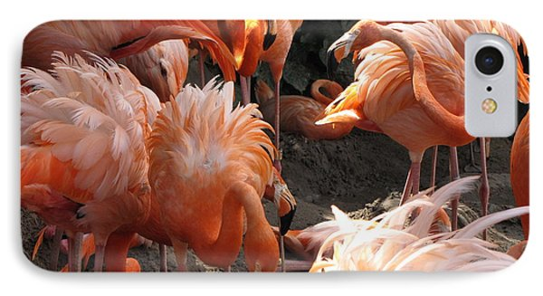 IPhone Case featuring the photograph Flamingos by Beth Vincent
