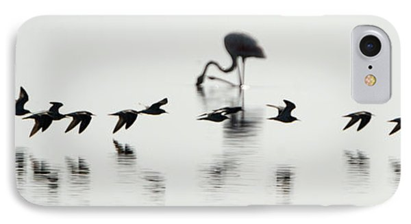 Flamingos In A Lake, Lake Manyara IPhone Case by Panoramic Images