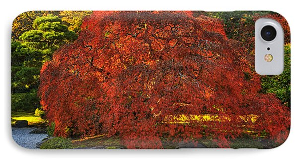 Flat Garden Maple IPhone Case by Mark Kiver