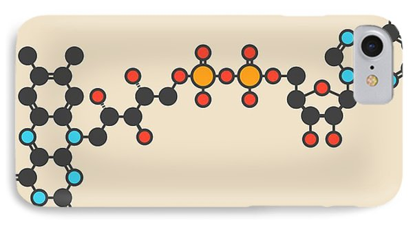 Flavin Adenine Dinucleotide Molecule IPhone Case by Molekuul