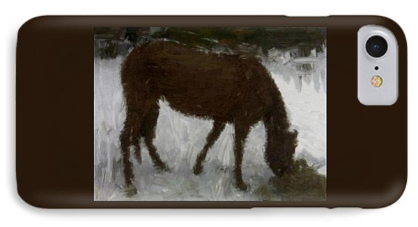 IPhone Case featuring the painting Flicka by Bruce Nutting