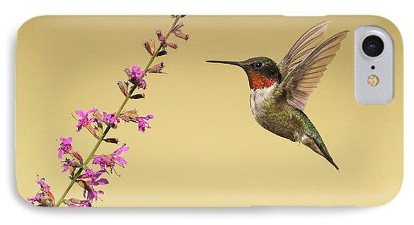 Flight Of A Hummingbird IPhone Case by Daniel Behm