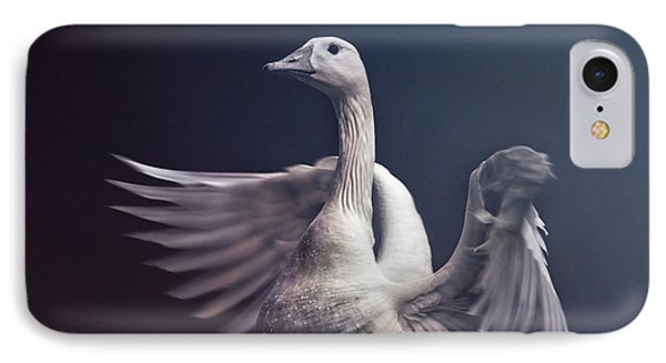 Flight Of Fancy IPhone Case by Jessica Brawley