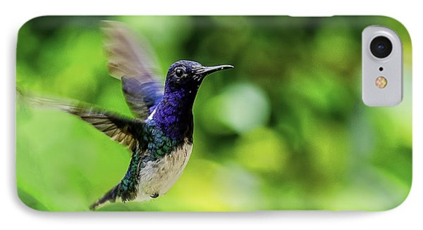 IPhone Case featuring the photograph Flight Of The Hummingbird by Rob Tullis