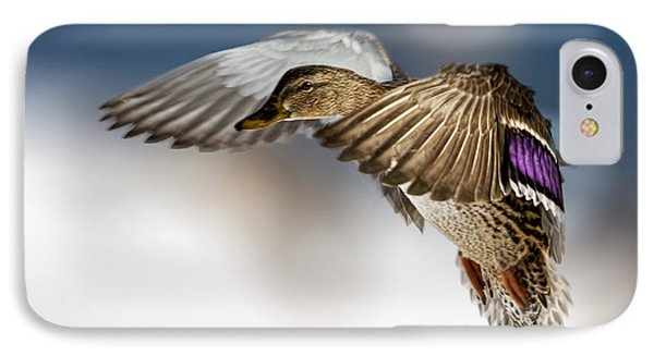 Flight Of The Mallard IPhone Case