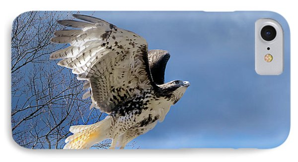 Flight Of The Red Tail IPhone Case by Bill Wakeley