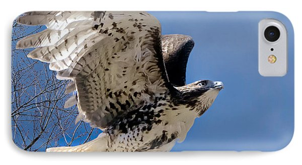 Flight Of The Red Tail Square Phone Case by Bill Wakeley