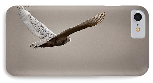 IPhone Case featuring the photograph Flight Of The Snowy Owl by Erin Kohlenberg
