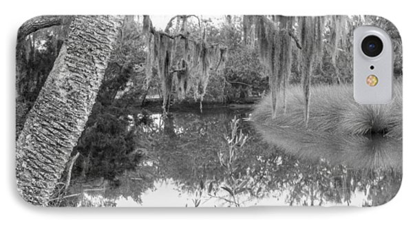 Fllorida Swamp Lan 380 IPhone Case by G L Sarti