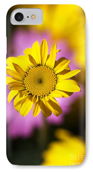IPhone Case featuring the photograph Floating Daisy by Joy Watson