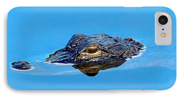 Floating Gator Eye IPhone Case by Chris Mercer