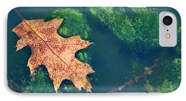 Floating Leaf  Phone Case by Karen Adams