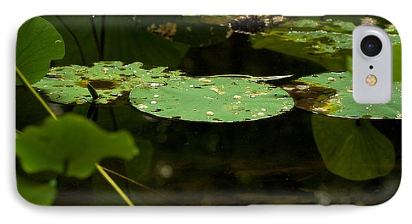 IPhone Case featuring the photograph Floating World 1 - Lily Pads  by Jane Eleanor Nicholas