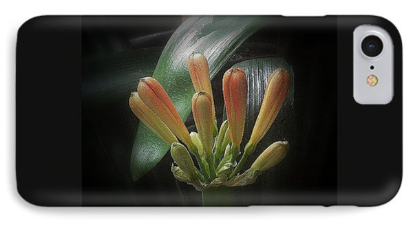 Flora 1 IPhone Case by Andrew Drozdowicz