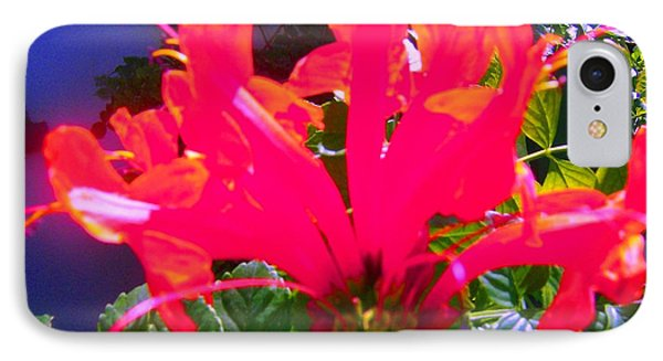 Floral 6 IPhone Case