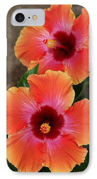 Floral Beauty 2  IPhone Case by Christy Pooschke