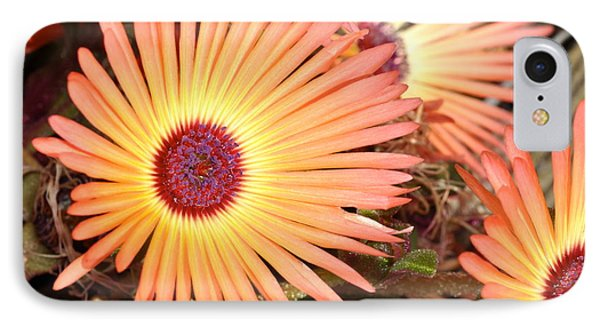 IPhone Case featuring the photograph Floral by Cathy Mahnke