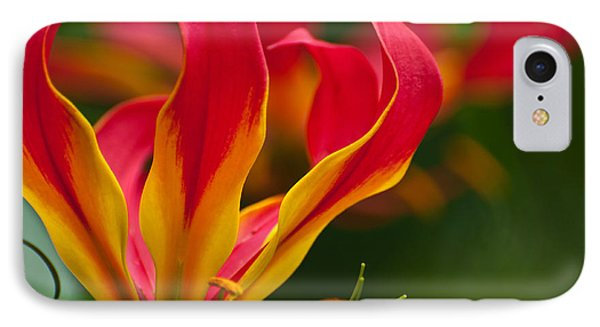 IPhone Case featuring the photograph Floral Flames by Sabine Edrissi
