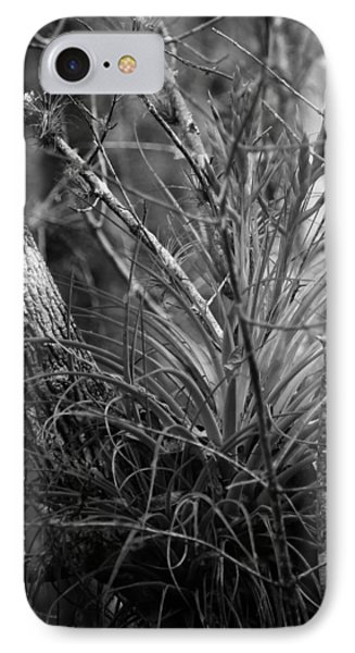 IPhone Case featuring the photograph Florida Everglades by Joseph G Holland