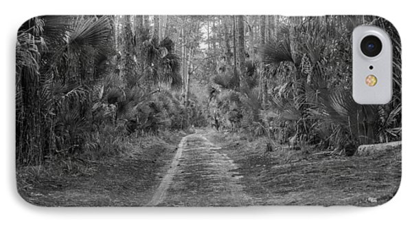 Florida Forest  Lan 381 IPhone Case by G L Sarti