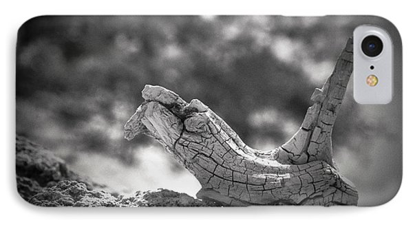 IPhone Case featuring the photograph Florida Keys Driftwood by Bradley R Youngberg