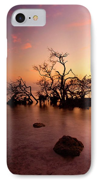 Florida Keys Sunset Phone Case by Mike  Dawson