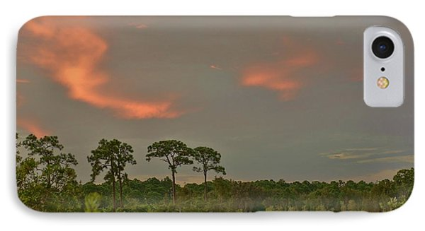 IPhone Case featuring the photograph Florida Landscape by Lynda Dawson-Youngclaus