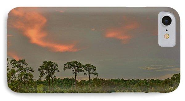 Florida Landscape IPhone Case by Lynda Dawson-Youngclaus