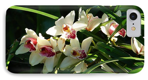 Florida Orchids IPhone Case by Lew Davis