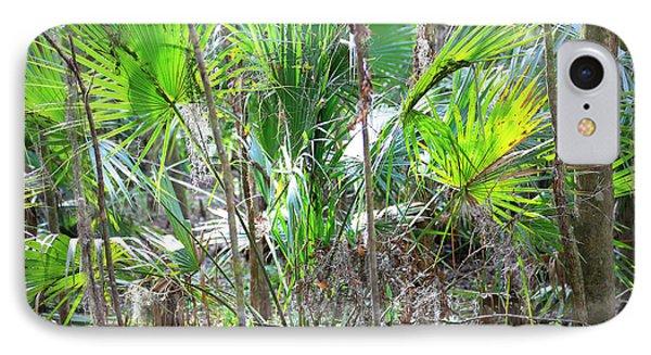 Florida Palmetto Bush Phone Case by Carol Groenen