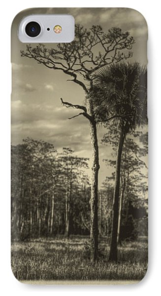 Florida Postcard Phone Case by Debra and Dave Vanderlaan
