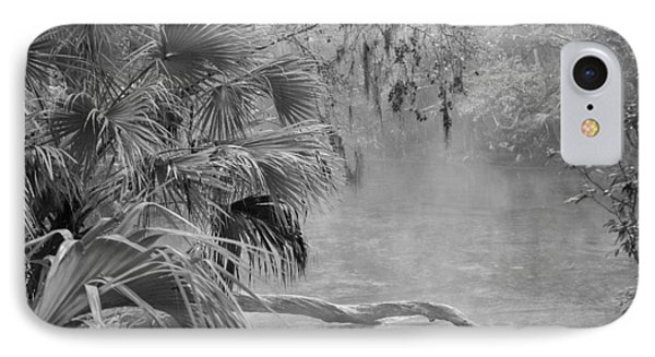 Florida Swamp Lan 382 IPhone Case by G L Sarti