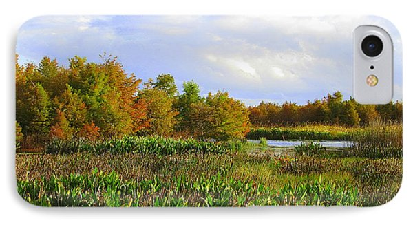 Florida Wetlands August IPhone Case