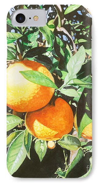 Florida's Finest IPhone Case by Barbara Jewell