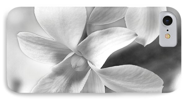 White Orchid IPhone Case by Mike McGlothlen