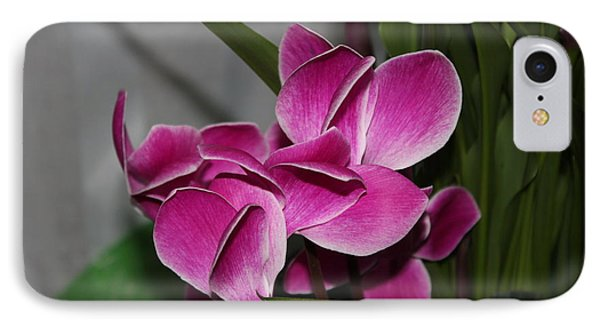 IPhone Case featuring the photograph Flower by Cyril Maza