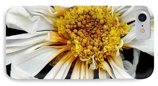 Flower - Daisy - Drunken Sun IPhone Case by Mike Savad