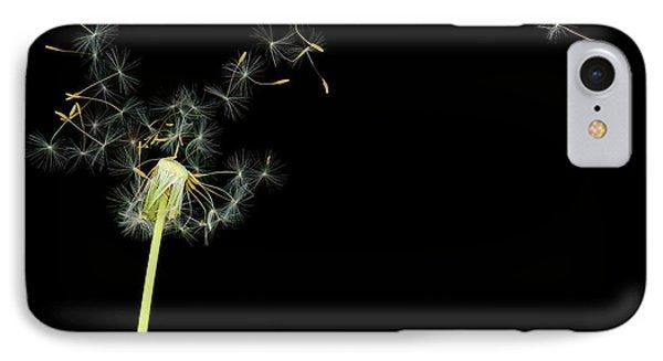 Flower - Dandelion - Gesundheit  IPhone Case by Mike Savad