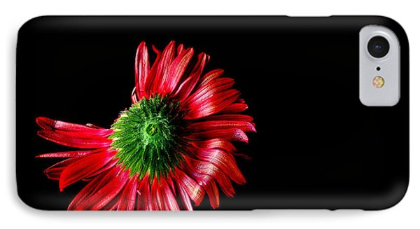 Flower Down IPhone Case by Marwan Khoury