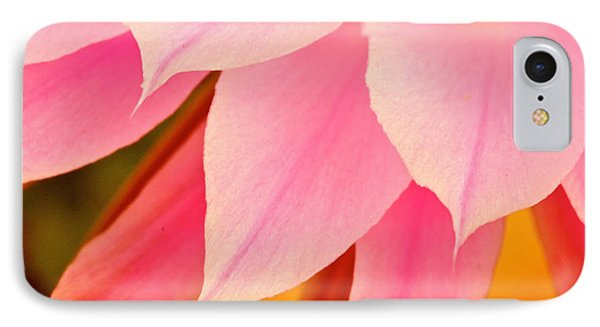 Flower Feathers IPhone Case by Michael Cinnamond