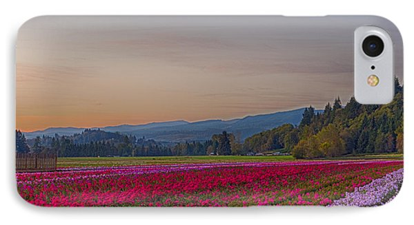 Flower Field At Sunset In A Standard Ratio IPhone Case