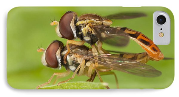 Flower Flies Mating Phone Case by Clarence Holmes