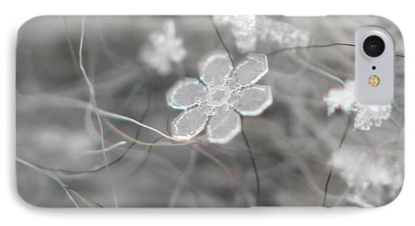 IPhone Case featuring the photograph Flower In The Snow by Stacey Zimmerman