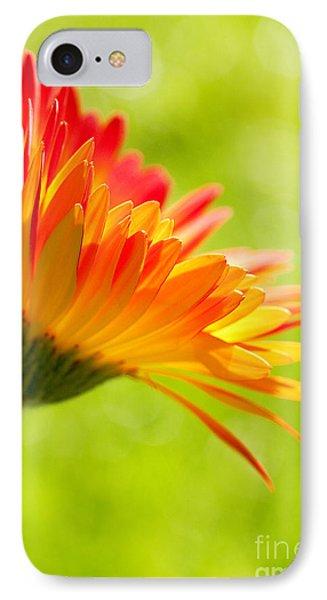 Flower In The Sunshine - Orange Green Phone Case by Natalie Kinnear